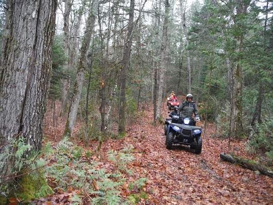 image of a group of ATV riders on muddy forest path