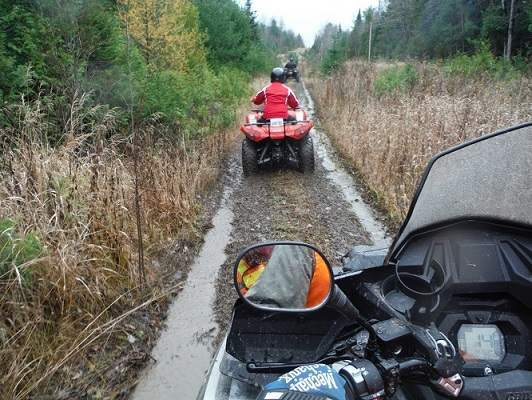 photo of ATVs on trail from viewpoint of a rider