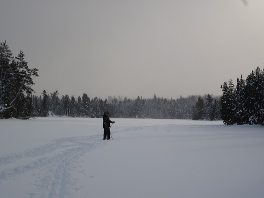 image of man cross-country skiing on lake