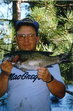 photo of man on shore with big bass