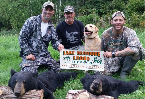 photo of two hunters with two harvested bears