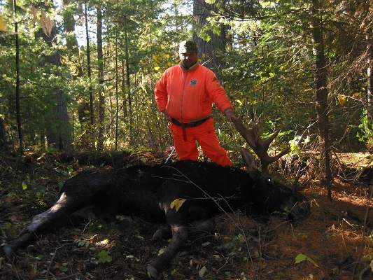 photo of man in orange with harvested moose